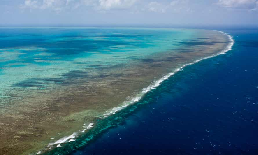 Aerial View of Great Barrier Reef, Queensland. A long-time Liberal party adviser has been appointed the new chief executive of the Great Barrier Reef Marine Park Authority.