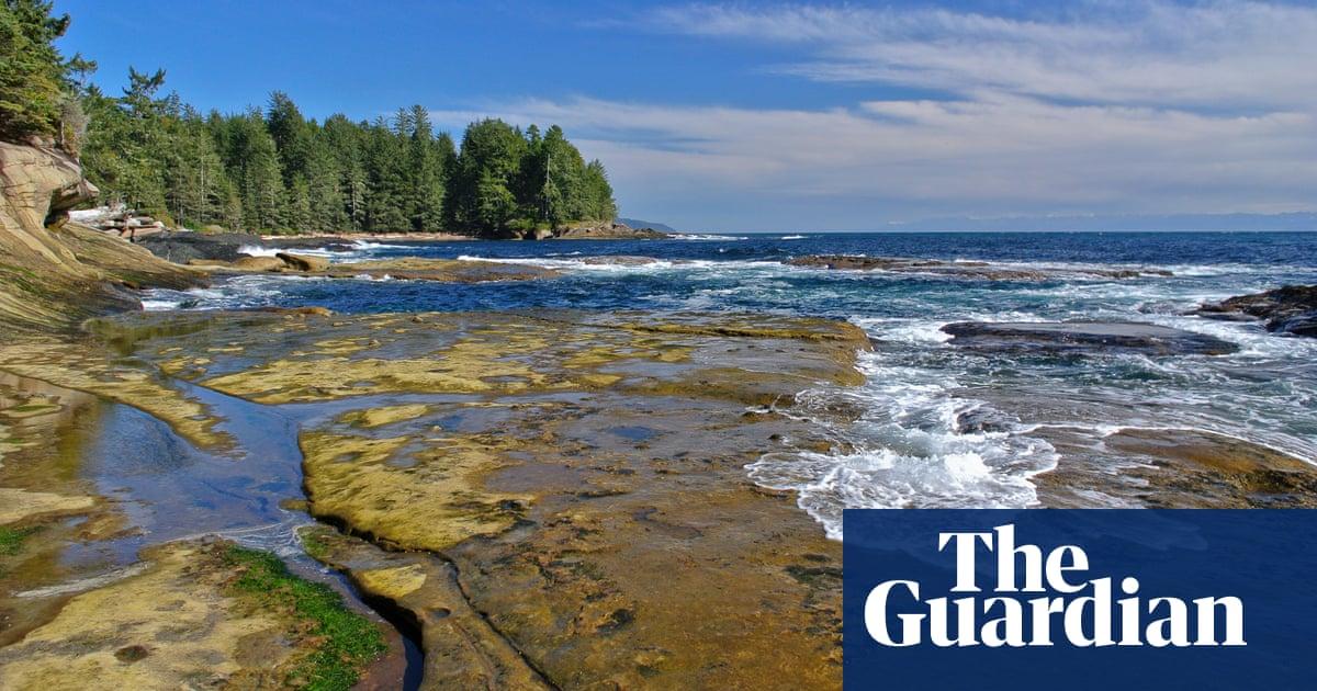 afc60efd0 Why do human feet keep washing ashore in British Columbia