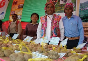Practical Action helped indigenous communities in the Peruvian Andes to find a local solution to food shortages caused by cold weather.