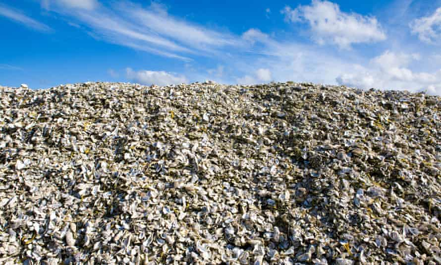 A huge mound of waste at a landfill site