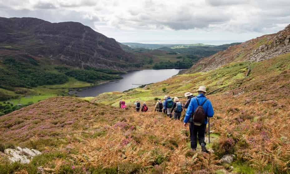 Ramblers group walking to Llyn Cwm Bychan in Rhinog mountains of Snowdonia National Park