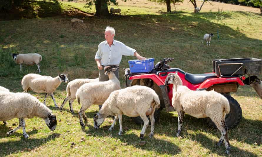 Jamie Smith on his farm in Worcestershire