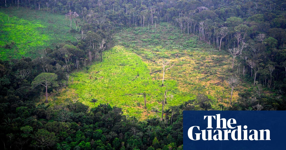 Murders of environment and land defenders hit record high