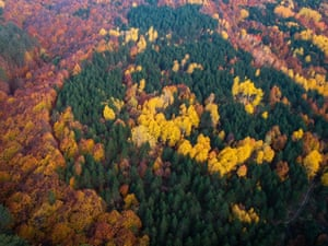 Autumn landscape of Domanic Mountains with fall foliage