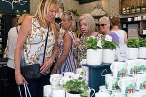 Women discuss potted plants