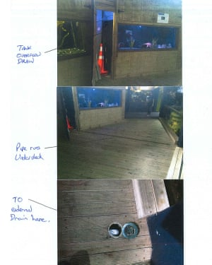 An annotated series of photos showing how 'Inky' the octopus escaped from his tank at the National Aquarium in New Zealand and into the sea via a drainpipe.