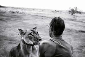 Tony Fitzjohn, conservationist and protégé of George Adamson, with Jipe, a lion he raised from orphaned cub to full adult