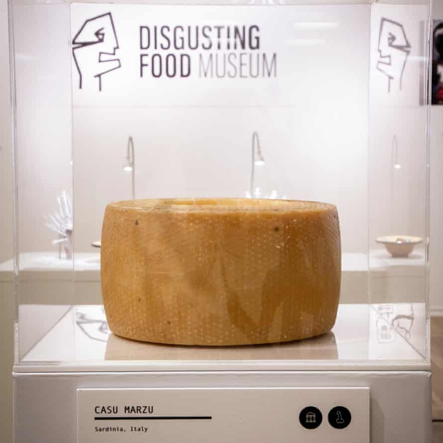 The Disgusting Food Museum, Malmo, Sweden