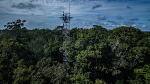 A monitoring tower in the middle of the rainforest