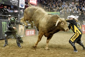 Chase Outlaw dodges Cochise the bull after being bucked off in the final round of the PBR Unleash the Beast contest at Madison Square Garden, New York