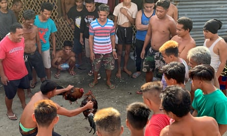 Cockfighting is popular in the Philippines but is currently banned under Covid-19 restrictions.