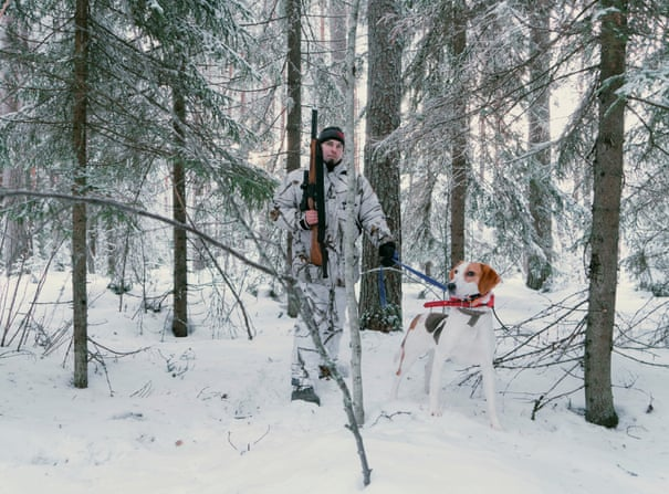 It's very scary in the forest': should Finland's wolves be