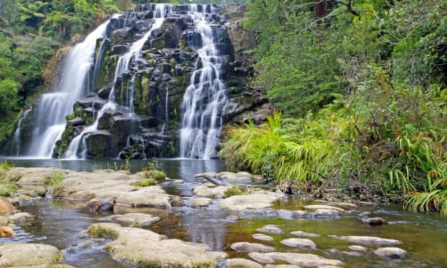 Owharoa falls, inside Karangahake Gorge, is a popular swimming spot in Waikato, New Zealand.