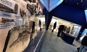 Museum of Jurassic Marine Life in the village of Kimmeridge