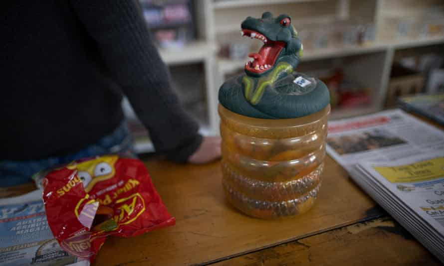 The pythons container at the Binalong store