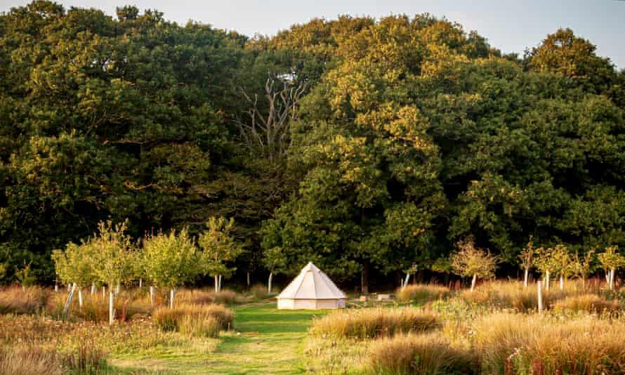 The Secret Campsite near Lewes, UK