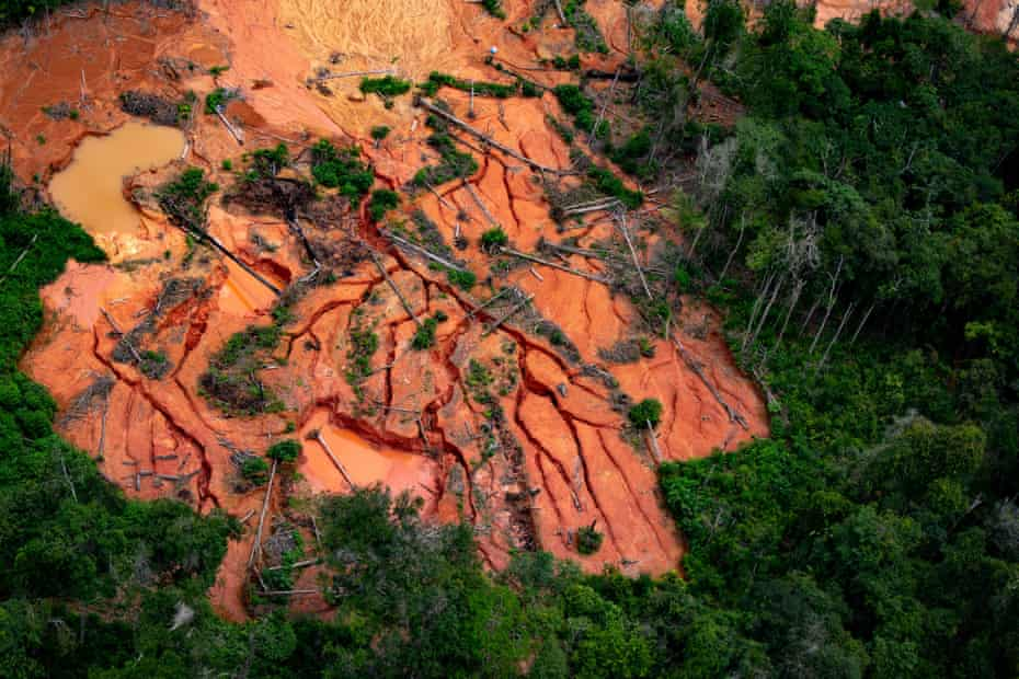 An area of rainforest destroyed by goldminers in the Apiaú region of the Yanomami reserve.