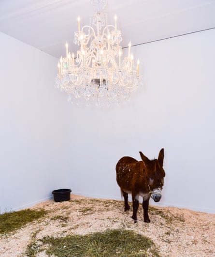 Maurizio Cattelan's Donkey: a sardonic self-portrait.