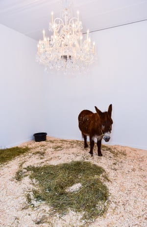A special project by Maurizio Cattelan, celebrating Daniel Newburg Gallery, involved the exhibition of a live donkey.