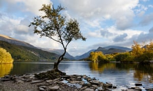 Below the surface: the smooth waters of Llyn Padarn.
