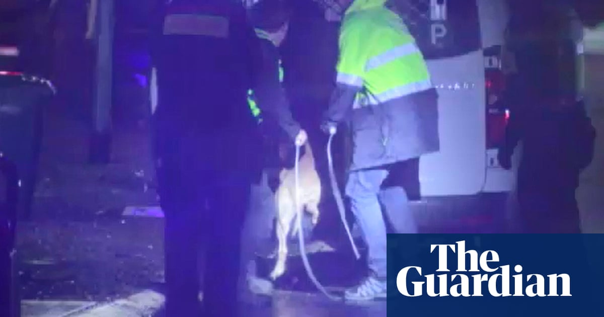 Melbourne dog attack leaves man dead and woman badly injured