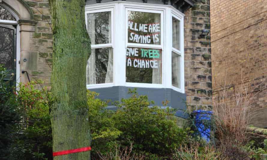 A ribbon marks a tree set for felling beside a protest sign on Rustlings Road, Sheffield