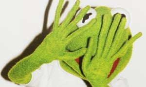 Kermit the frog photographed by Terry Richardson