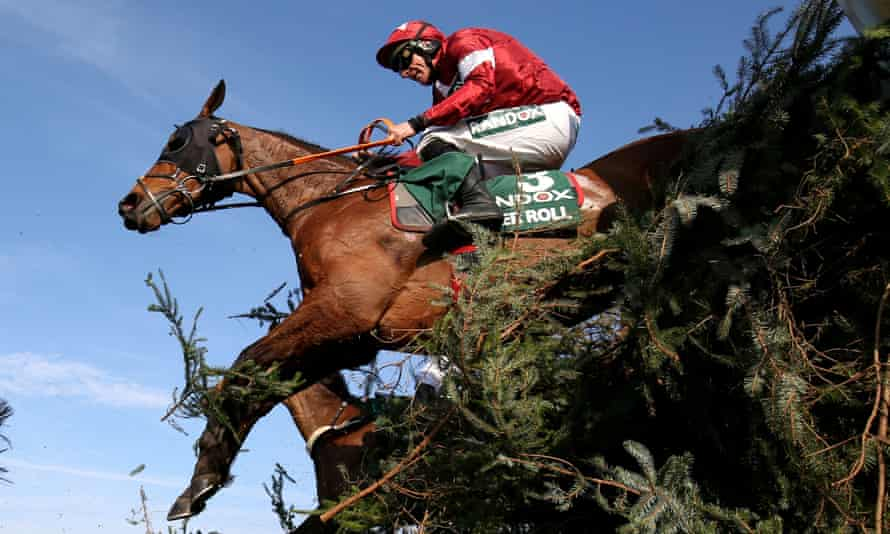 Tiger Roll on his way to victory in the 2019 Grand National.