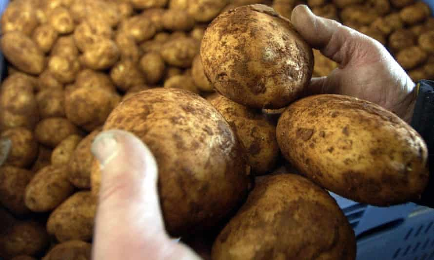 Grower and retailer Tony Galati gave away 200 tonnes of excess potatoes in January.