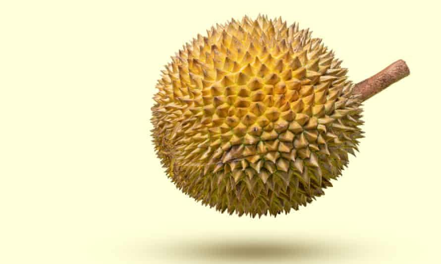 king of king durian
