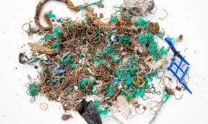 A few of the thousands of old elastic bands, together with parts of green fishing net, found by conservationists on Mullion island