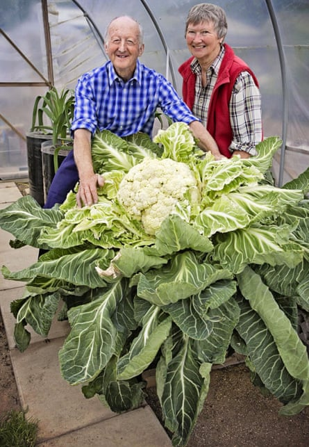 Peter Glazebrook and his wife, Mary, with his world-record cauliflower in 2014