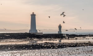 Lighthouses with seabirds, Akranes, Iceland