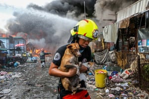 Firefighter carries dog and cat