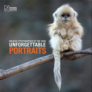 Unforgettable portraits book cover