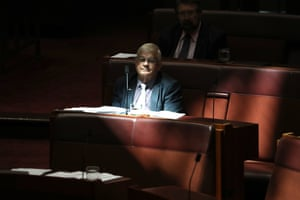 UAP senator Brian Burston during question time in the senate