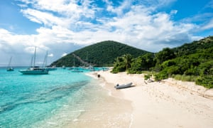 More than half of the companies that appear in the Panama Papers are registered in the British Virgin Islands