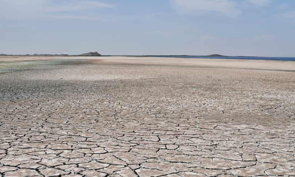 An area along the Salton Sea that was once filled with water.