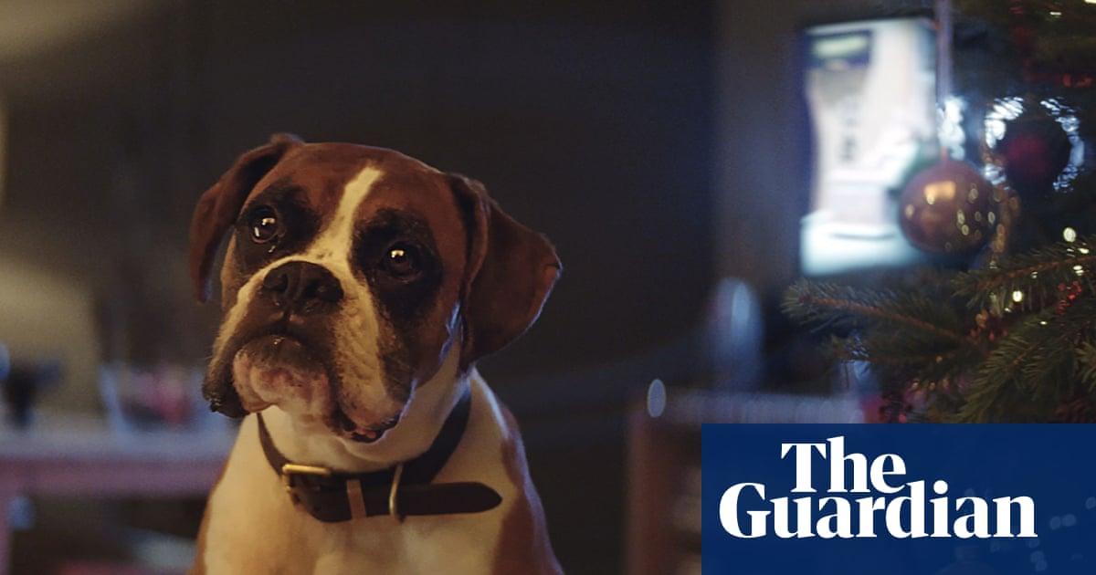 John Lewis 2016 Christmas advert: meet Buster – video | Global | The ...