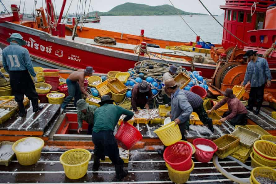 Migrant labourers sort the catch on a Thai fishing boat in Sattahip.