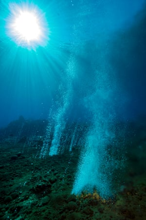 Carbon dioxide bubbles rising from seafloor among coral reefs