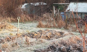 Itching to get digging in the garden? Fight the urge | Alys