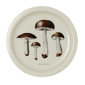 Mushroom (14cm), £3.99, hm.com