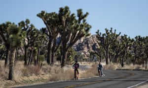 Visitors ride their bikes along the road at Joshua Tree national park in the Mojave desert.