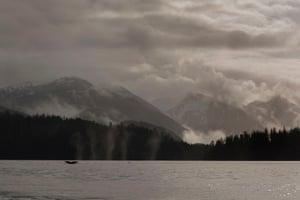 The coast around the Sitka region, Alaska