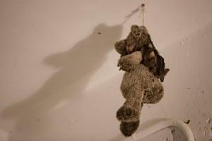 A wounded Egyptian fruit bat hangs on a teddy bear in Nora Lifschitz''s apartment in Tel Aviv