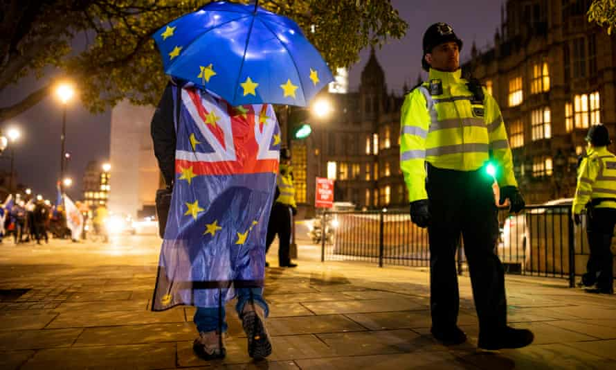 Pro-remain protesters outside Westminster.