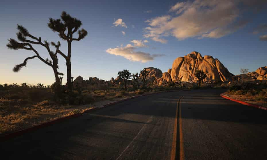 A road leads toward rock formations in Joshua Tree national park.