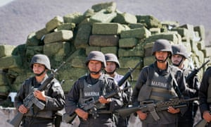 Mexican marines stand in front of about four tonnes of marijuana before its incineration.