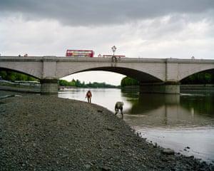 Putney Bridge, London, 11.45am   Treasure hunters scan the beach at low tide.